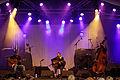 Photo - Festival de Cornouaille 2012 - Graeme Allwright en concert le 28 juillet - 019.jpg