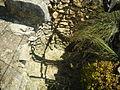 Phourni-elisa atene-3884.jpg