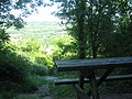 Picnic Table in Meenfield Woods - geograph.org.uk - 1333170.jpg