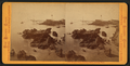 Pigeon Point, Loading Shoot, looking west, by Muybridge, Eadweard, 1830-1904.png