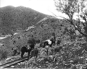 Grant County, New Mexico - Narrow-gauge railroad to the mines at Pinos Altos