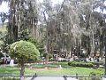 Plaza en el Estado Mérida.jpg