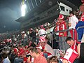 Poland - Austria (03).jpg