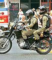 Policia Linces panama.jpg