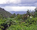 Ponce as Viewed from the Mountains.jpg