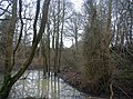 Pond by the bridleway - geograph.org.uk - 1680118.jpg
