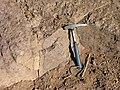Precambrian Ignimbrite near Tabounte in Morocco.jpg