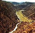 Prescott national forest meadow 1979.jpg