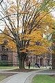 Princeton (8271120828).jpg