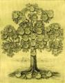 Produktbaum der Kalichemie.png