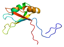 Protein SART3 PDB 2do4.png