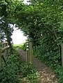 Public footpath by side of Tiddesley Wood - geograph.org.uk - 1302348.jpg