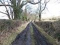 Puck Pit Lane - geograph.org.uk - 1726242.jpg