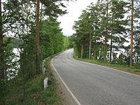 Punkaharju landscape.JPG