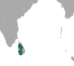 Purple-faced Langur area.png
