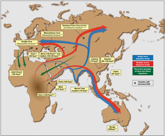 Early human migrations - Putative migration waves out of Africa and back migrations into the continent, as well as the locations of major ancient human remains and archeological sites (López et al. 2015).