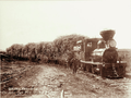 Queensland State Archives 5142 Sugar Cane train Fairy Mead Bundaberg c 1896.png