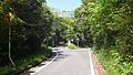 R465Nakagawarachoyasusaka-Senzan.JPG
