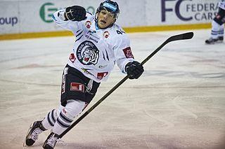 Radim Šimek Czech ice hockey player