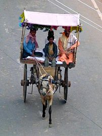 Rajgir - 007 Tonga Transport (9242493413).jpg