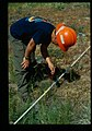 Rangeland monitoring using Parker 3-step Method, Okanagan Washington 2002.jpg
