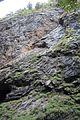 Ravine cliff face (25621415765).jpg