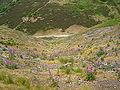 Rebild National Park 09 ies.jpg