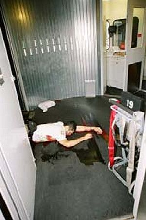 Rigoberto Alpizar crime scene photo