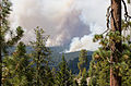 Rim Fire Yosemite August 2013 001.jpg