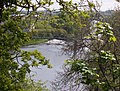 River Clyde at Daldowie - geograph.org.uk - 1477232.jpg