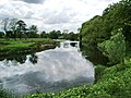 River Ribble south of Grindleton - geograph.org.uk - 451376.jpg
