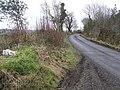 Road at Derrynahimmick - geograph.org.uk - 1178483.jpg