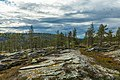 Rocky landscape on Kivitunturi, Savukoski, Lapland, Finland, 2021 June.jpg