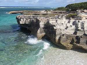 Rodrigues - Calcarenitic shore of Rodrigues island, at Pointe Coton