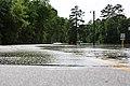Roman Forest Flood - 4-18-16 (26419873492).jpg