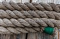 Rope on a wooden post at Sidney Harbor, British Columbia, Canada 07.jpg
