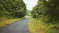 Route des Radiers (3056050504).jpg