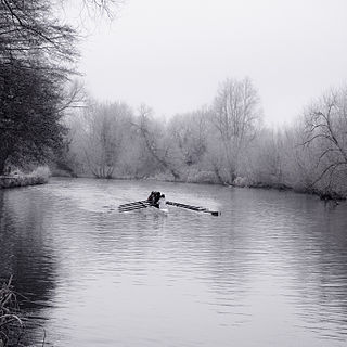Rowing on the River Thames
