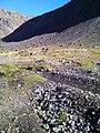 Ruta Baños Morales - Termas De Colina, Chile - panoramio (2).jpg