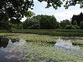 Rybník Březina (015).jpg