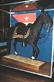SHERIDAN'S HORSE RIENZI, NATIONAL MUSEUM OF AMERICAN HISTORY, WASHINGTON D.C..jpg