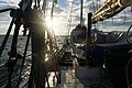 Sailing in Gulf of Finland, Saint Petersburg.jpg