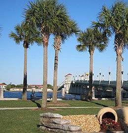 Saint Augustine,Florida,USA. - panoramio (16)