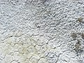 Salt flat (43865727472).jpg