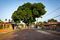 Salvaterra, Pará, Brasil - 2013.10.15 (19).jpg
