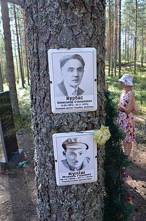 Sandarmokh -  Commemorative photos fixed to trees around the pits at Sandarmokh.