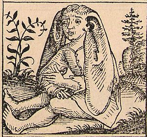 Panotti - Depiction of Panotti in the Nuremberg Chronicles.