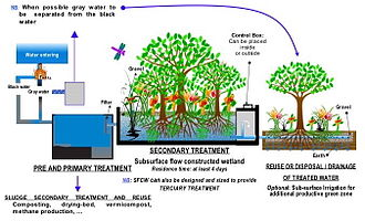 Sewage treatment - Process flow diagram for a typical treatment plant via subsurface flow constructed wetlands (SFCW)