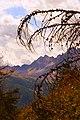 Scorcio Alpe Devero.jpg