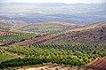 Sedeh Yasouj road - Charkas - panoramio (1).jpg